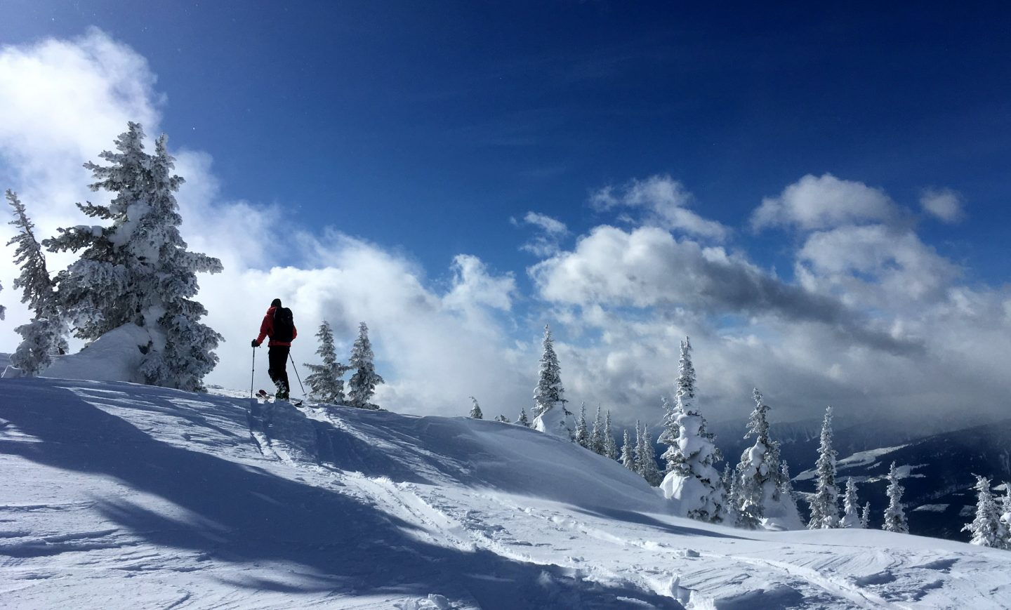 Skitouring in Revelstoke – earn your powder lines