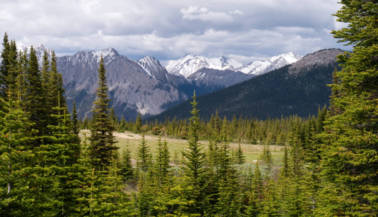 Jasper National Park – back in the Rockies